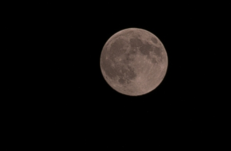 See The Moon