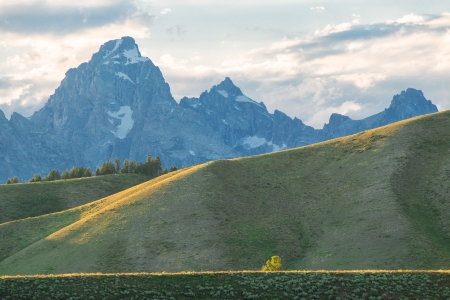 Postcard Tetons