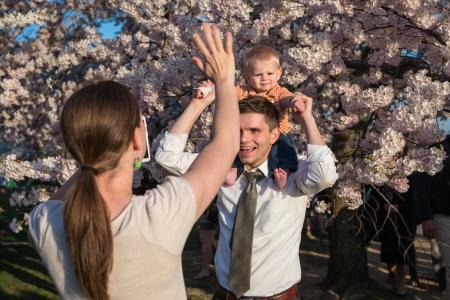 CherryBlossom2014k