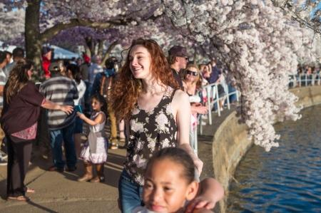 Blossoms 2015h