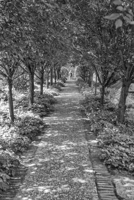 Gardens For Book 2-38