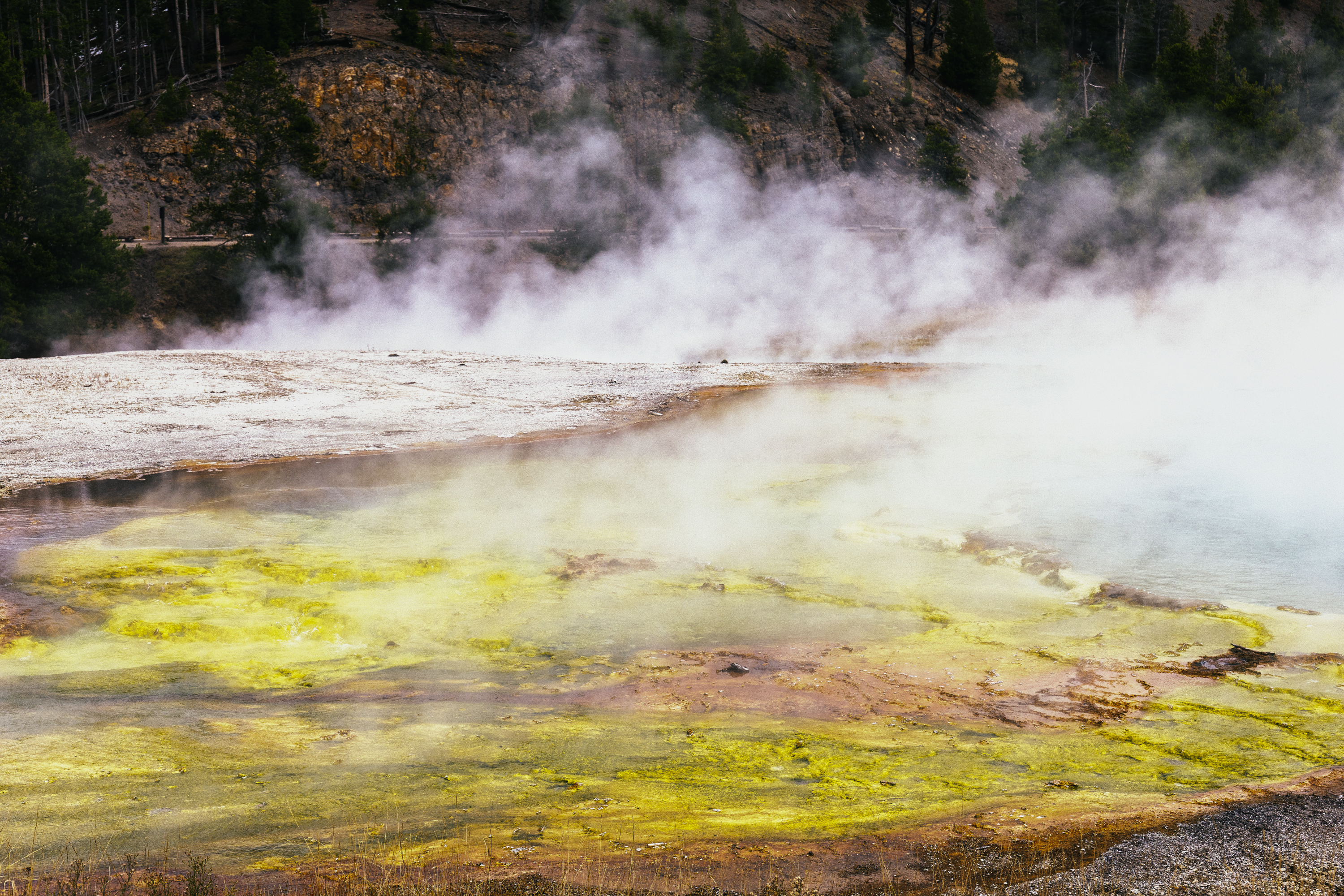 Yellowstone Abstract-18